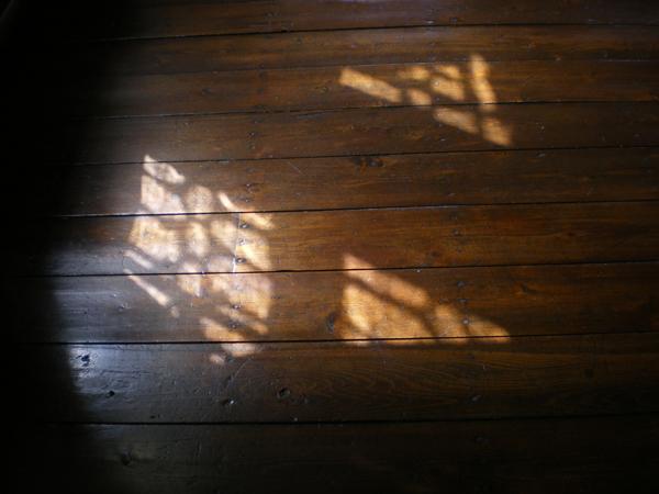 床。午後の光。